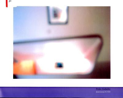 (Interiores) 01-010 (Pedro Gadanho)