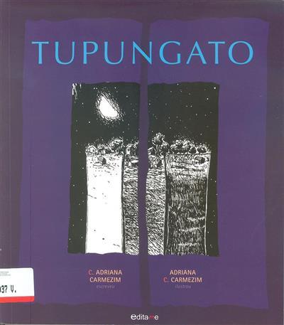 Tupungato (C. Adriana Carmezim)