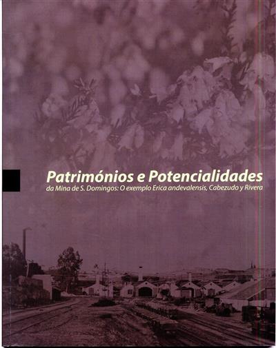 Patrimónios e potencialidades da Mina de S. Domingos (coord. João Miguel Serrão Martins)