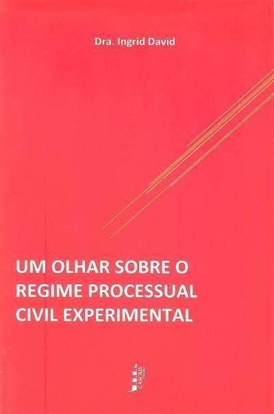 Um olhar sobre o regime processual civil experimental (Ingrid David)