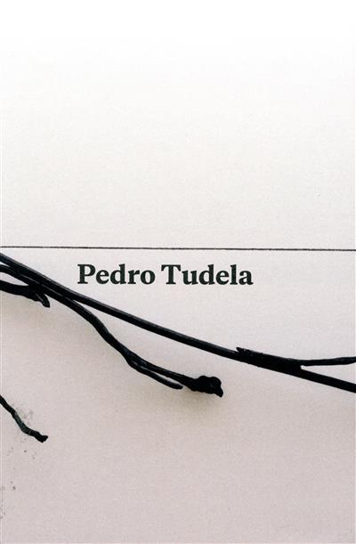 Pedro Tudela (coord. ed. e rev. Pedro Silva)