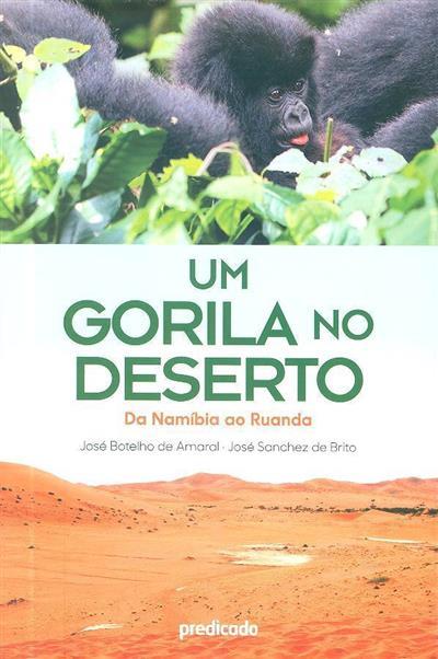 Um gorila no deserto (José Botelho de Amaral, José Sanchez de Brito)