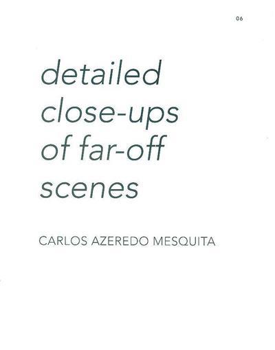 Detailed close-ups of far-off scenes (Carlos Azeredo Mesquita)