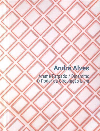 Arame farpado - dinamite (texto e curadoria Sandra Vieira  Jürgens)