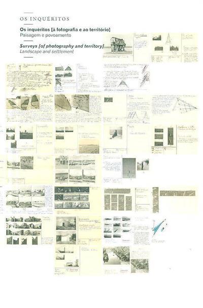 Os inquéritos (Nuno Faria... [et al.])