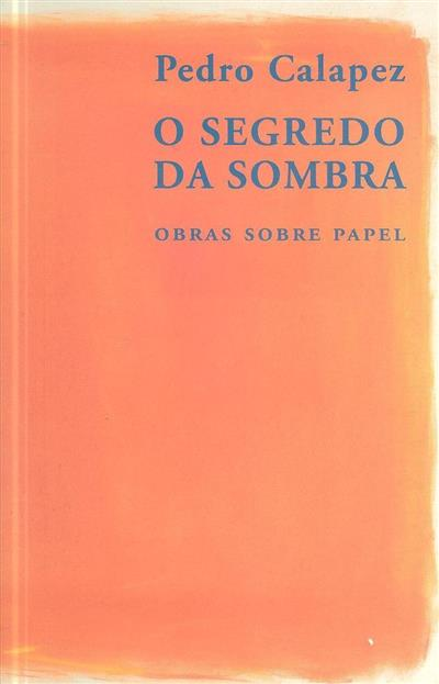 Pedro Calapez (texto João Miguel Fernandes Jorge)