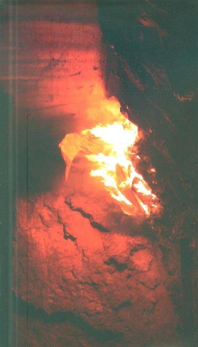 Debaixo do vulcão 1 (textos Hugo Canoilas)