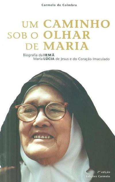 Um caminho sob o olhar de Maria (Carmelo de Santa Teresa)