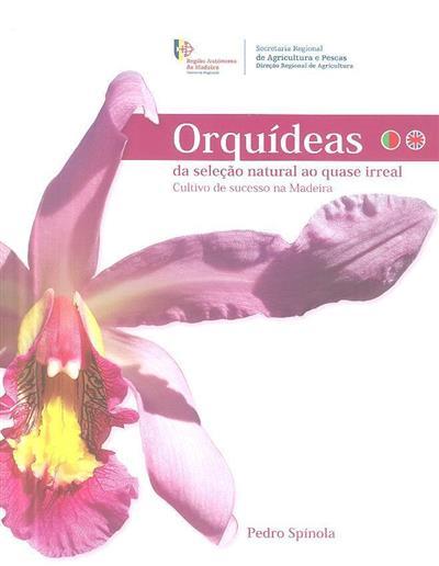 Orquídeas, da seleção natural ao quase irreal (Pedro Spínola)
