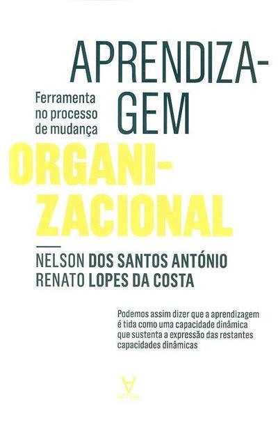 A aprendizagem organizacional (Nelson António, Renato Lopes da Costa)