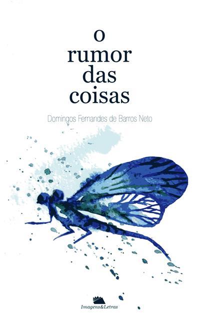 O rumor das coisas (Domingos Fernandes de Barros Neto)