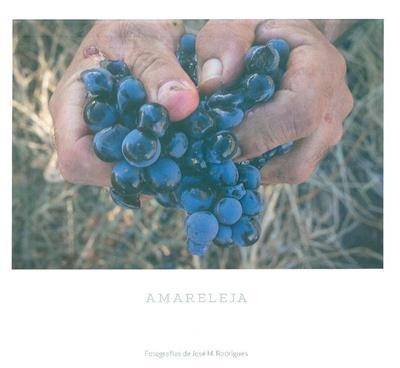 Amareleja (fot.  José Manuel Rodrigues)