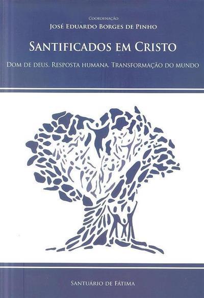 Santificados em Cristo (coord. José Eduardo Borges de Pinho)