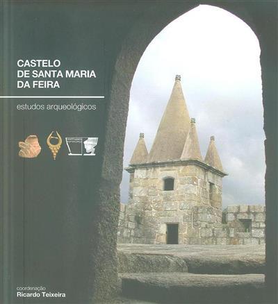 Castelo de Santa Maria da Feira, estudos arqueológicos (coord. Ricardo Teixeira)