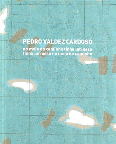 Pedro Valdez Cardoso (texto Filipa Oliveira)