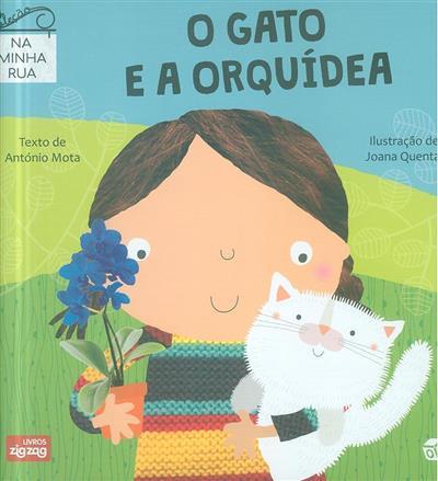 O gato e a orquídea (texto António Mota)