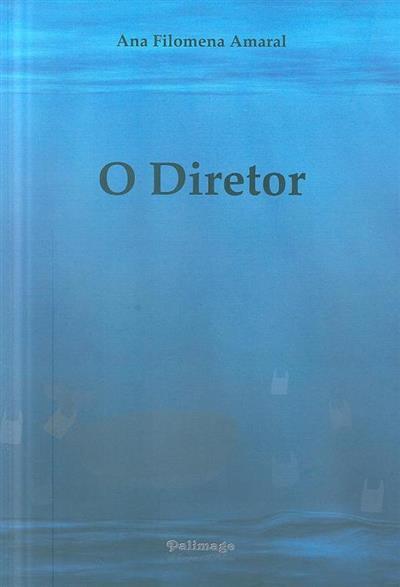 O diretor (Ana Filomena Amaral)