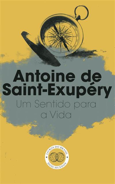 Um sentido para a vida (Antoine de Saint-Exupéry)