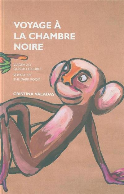 Voyage à la chambre noire (Cristina Valadas)