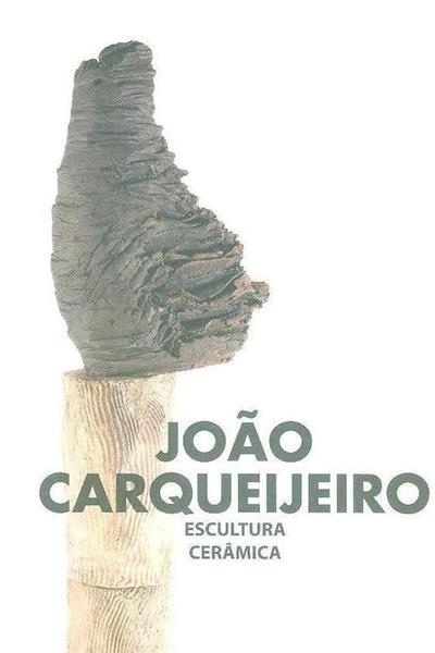 João Carqueijeiro, à superfície (textos Luís Filipe de Araújo, Agostinho Santos, João Carqueijeiro)