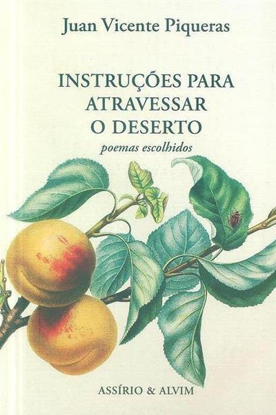 Instruções para atravessar o deserto (Juan Vicente Piqueras)