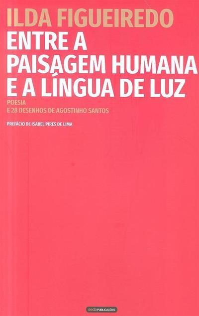 Entre a paisagem humana e a língua de luz (Olda Figueiredo)