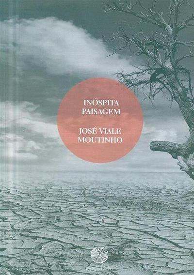 Inóspita paisagem (José Viale Moutinho)
