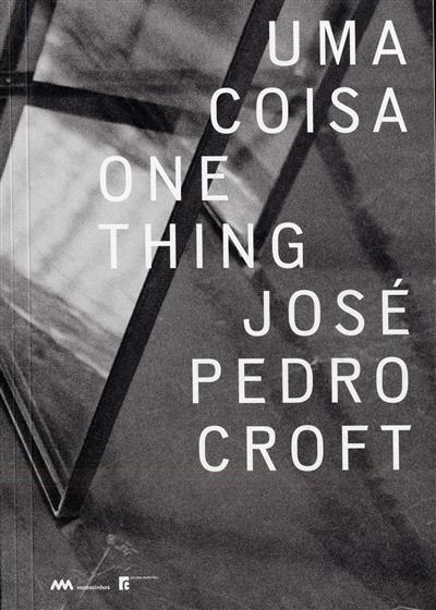 Uma coisa (José Pedro Croft)