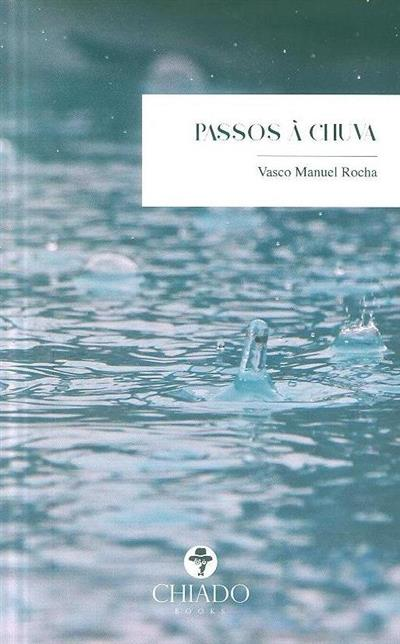 Passos à chuva (Vasco Manuel Rocha)