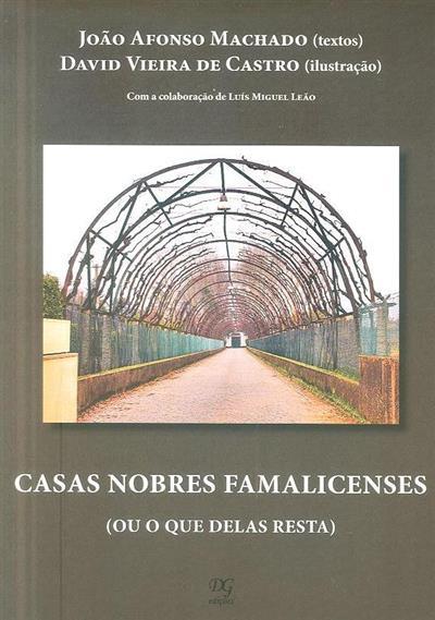 Casas nobres famalicenses (ou o que delas resta) (João Afonso Machado)
