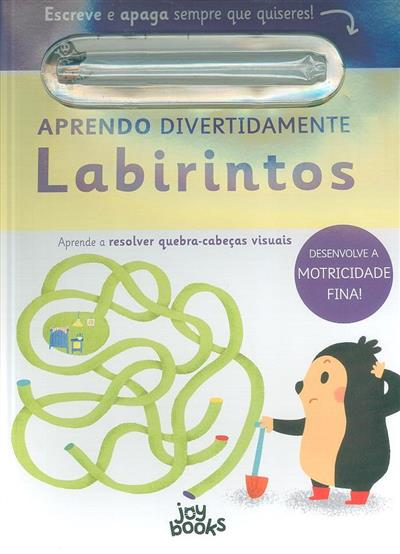 Labirintos, aprende a resolver quebra-cabeças visuais (Elizabeth Golding)