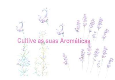 Cultive as suas aromáticas ([ed. lit.] Câmara Municipal de Lisboa)