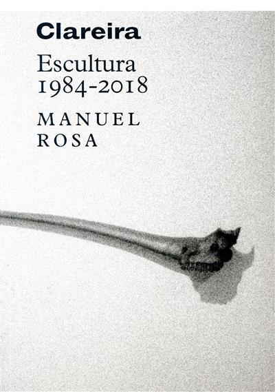 Clareira, escultura 1984-2018 (Manuel Rosa)