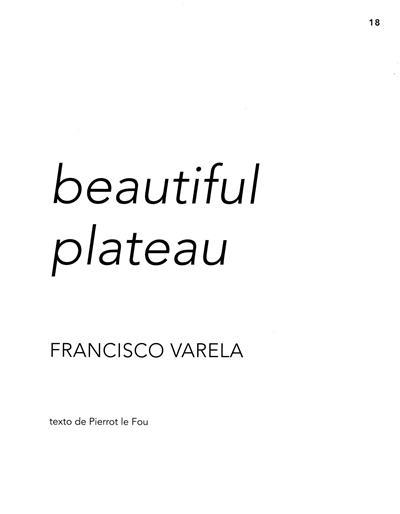 Beautiful plateau (Francisco Varela)