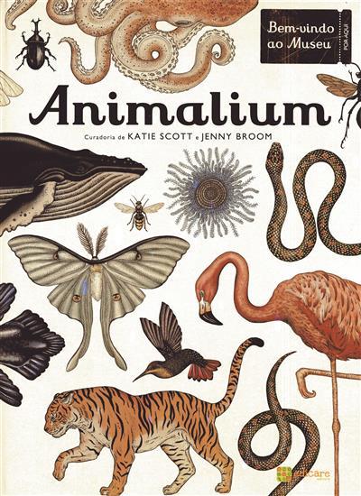 Animalium (Jenny Broom)
