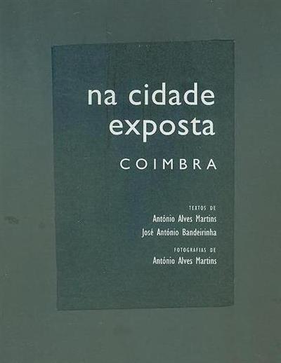 Na cidade exposta (António Alves Martins, José António Bandeirinha)