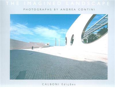 The imagined landscape (Andrea Contini)