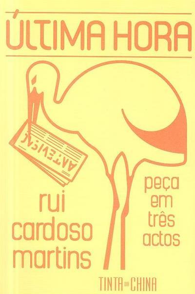 Última hora (Rui Cardoso Martins)