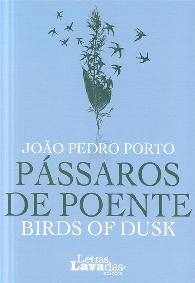 Pássaros de poente (João Pedro Porto)