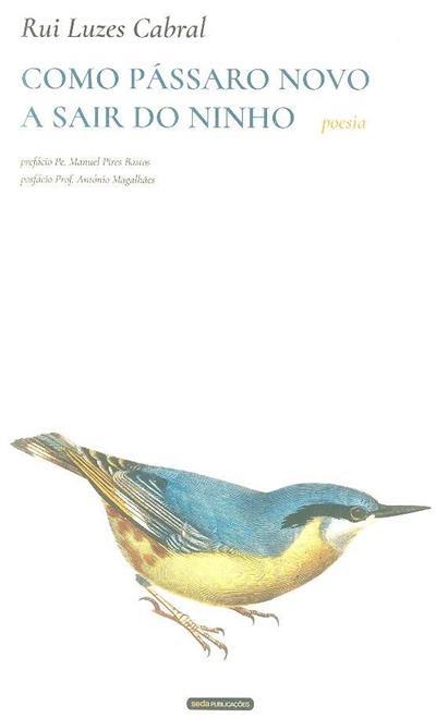 Como pássaro novo a sair do ninho (Rui Luzes Cabral)