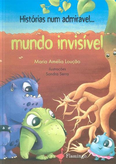 Histórias num admirável... mundo invisível (Maria Amélia Loução)