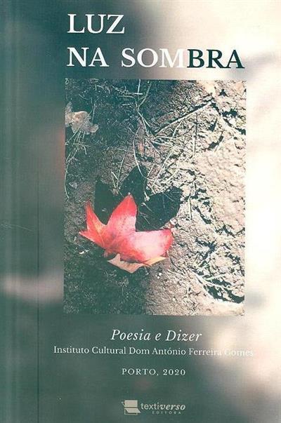 Luz na sombra (Instituto Cultural Dom António Ferreira Gomes)