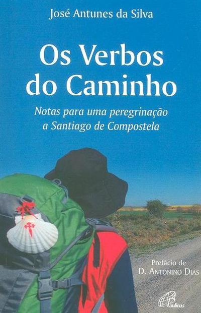 Os verbos do caminho (José Antunes da Silva)