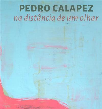 Na distância de um olhar, Pedro Calapez 2013-2020
