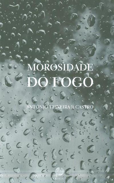 Morosidade do fogo (António Teixeira e Castro)